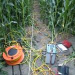 Misure elettriche in campo coltivato